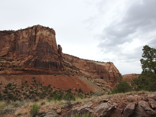 Colorado National Monument: Check out the beautiful colored minerals in the soil