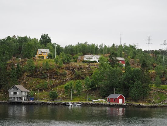 Rødne Fjord Cruise: Rodne Fjord Cruise to Mostraumen 4