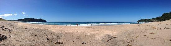 Hot Water Beach Photo
