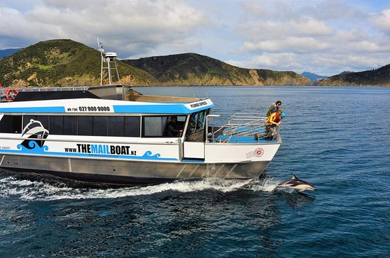 Dia Inteiro Marlborough Sounds Cruise...
