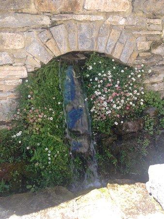 Jardin botanico de Santa Catalina Εικόνα