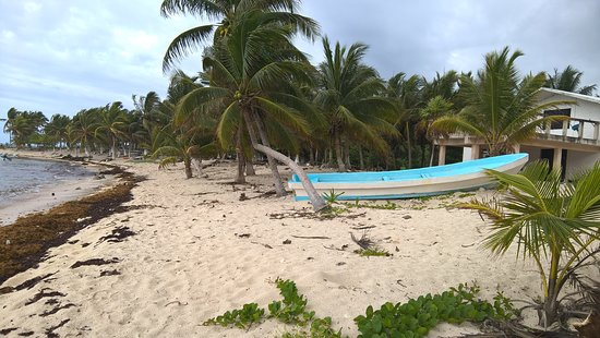 Vista de La playa de Paamul
