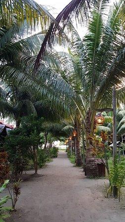 Scuba Junkie Mabul Beach Resort: 20180618_061648_large.jpg