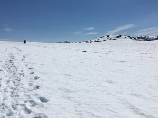 Nordic Ventures: Hiking through snow at the top