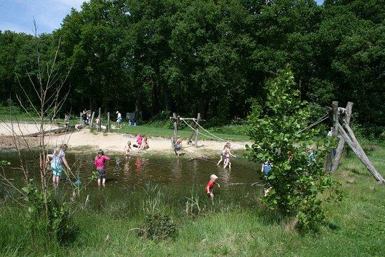 Lemele, Países Baixos: Kleine ondiepe speelvijver