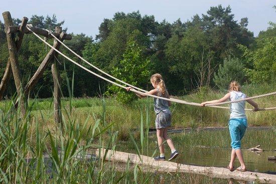 Lemele, Países Baixos: Speelvijvertje (30 cm diep)