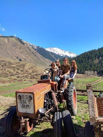 Kolsai Tour: explore Kazakhstan with www.kolsaitour.com