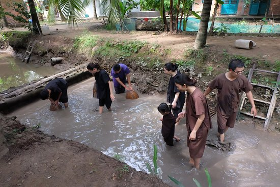 Du Lịch Sinh Thái Việt Nhật: tham gia trải nghiệm tát mương bắt cá