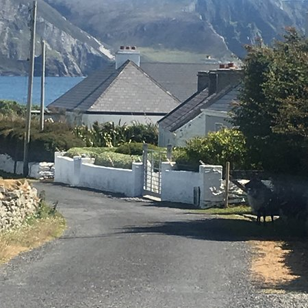 Joyce's Marian Villa Guesthouse: If you are planning a trip of a lifetime stay at Joyce's keel beach Achill. A bit of heaven in e