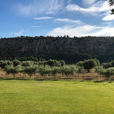 Flix, Espagne : photo1.jpg