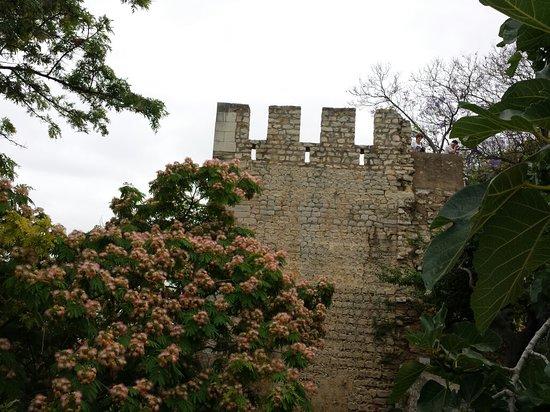 Castelo de Tavira : 20180625_104448_large.jpg