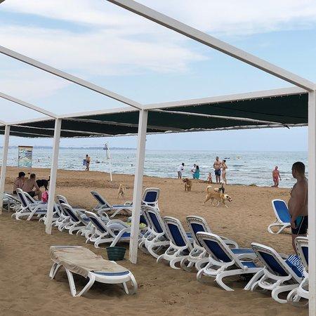 Foto de Alba Resort Hotel