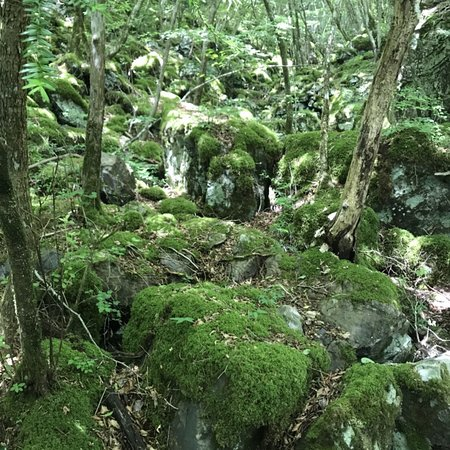 Kamikatsu-cho, اليابان: 山犬嶽