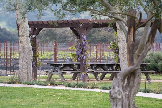 Melville Winery: Melville Vineyards, Lompoc, California