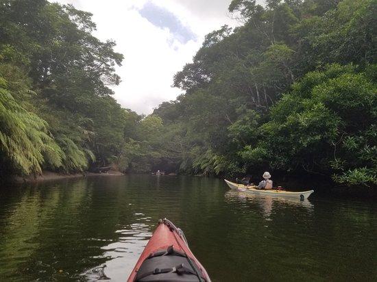 Iriomote Osanpo Kibun: Kayaking to Nakara Waterfall.