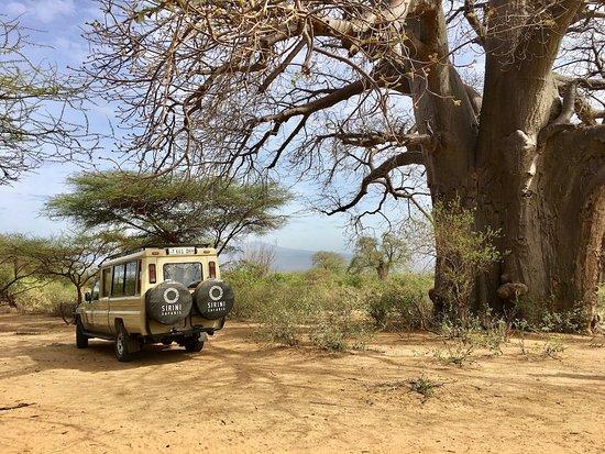 Sirini Safaris
