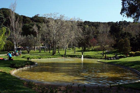 Parc de Montjuic: В парке