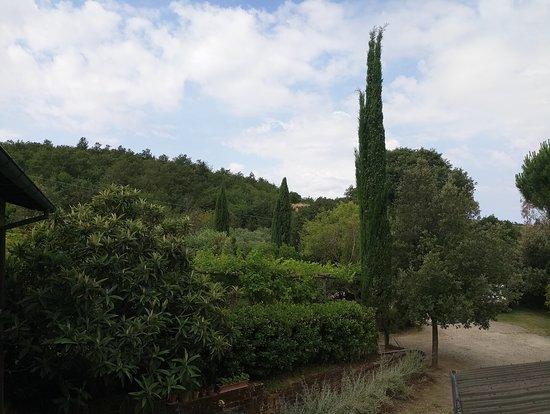 Azienda Agricola Camporegio: Foto 2