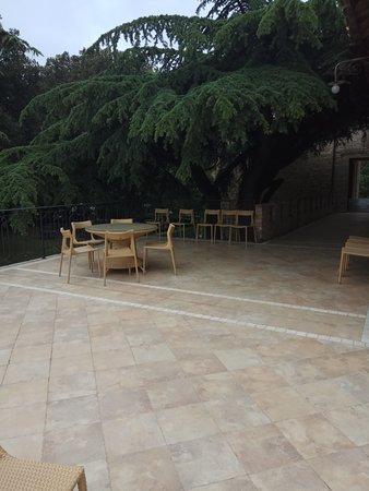 Hotel Parco dei Cavalieri: Il parco