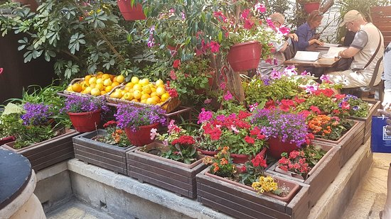 Bilde fra Fontanella Tea Garden