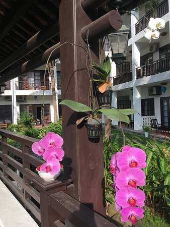River Beach Resort & Residences: Orchids & flowers in bloom