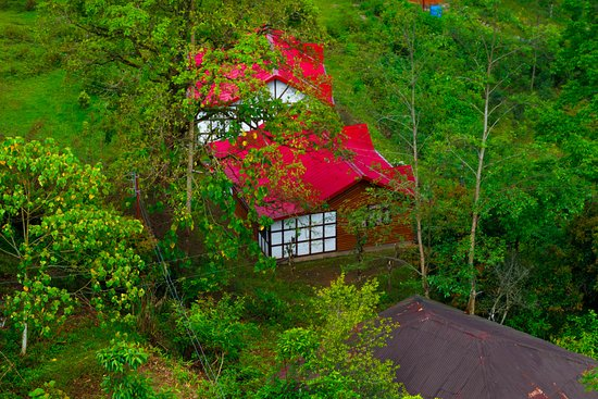 Lamahatta, India: Cottage stays at Pine Haven seen from the room