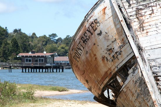 Inverness Store: Point Reyes Shipwreck, Inverness, California