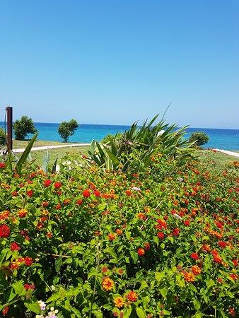 All Senses Nautica Blue Exclusive Resort & Spa: La vue des chambres