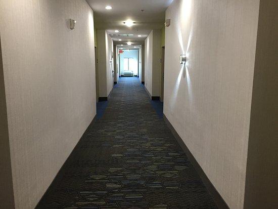 Powder Springs, Τζόρτζια: Pasillo del tercer piso, alfombra nueva y limpieza impecable