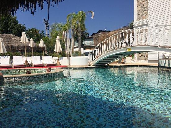 The Pine Hill Hotel & Suites Imagem