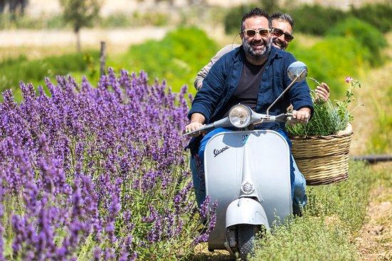 Scicli, Italie: enrico e giovanni tra le lavande