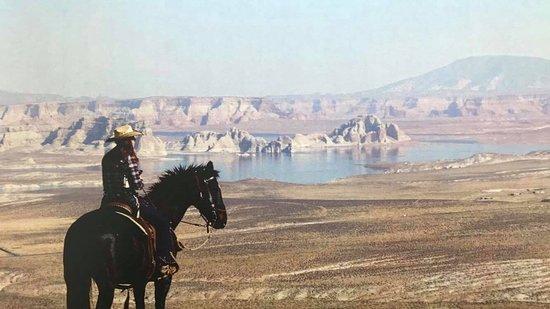 Border Towns Horse Company