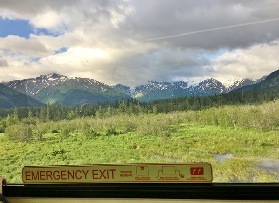 Alaska Railroad: Common type of view.