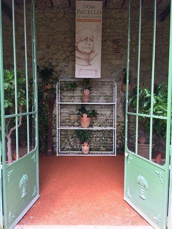 Chateau Gaillard: Entrée de l'orangerie