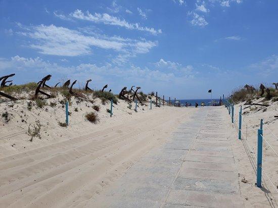 Valokuva: Praia do Barril