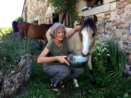 Brenazet: Pony's around the farm