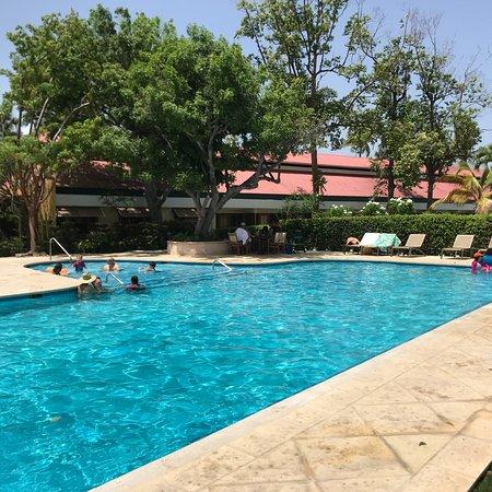 Copamarina Beach Resort & Spa: photo1.jpg