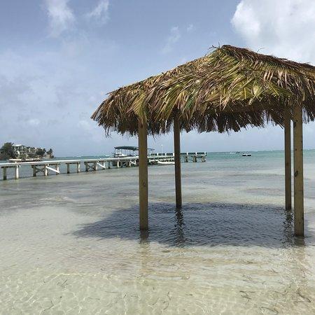 Copamarina Beach Resort & Spa: photo3.jpg