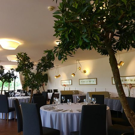 Terrazza Vilnius Restaurant Reviews Photos Phone