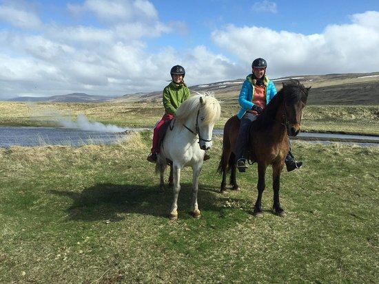 Sturlureykir Horses/Visiting HorseFarm