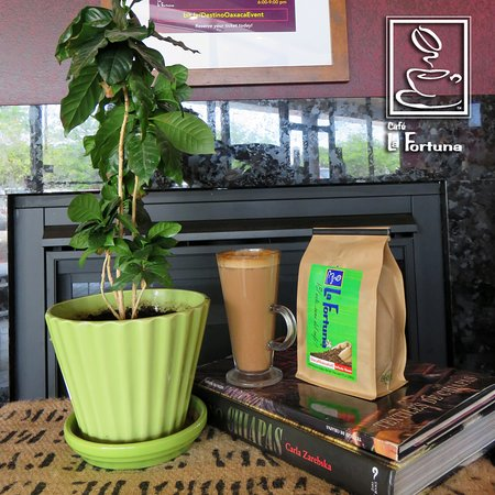 Cafe La Fortuna: Our mayan coffee with mexican hot chocolate, espresso, and your choice of milk.