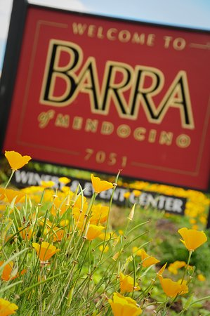 Redwood Valley, Califórnia: Photo by Larsen's Photography - Welcome sign and California poppies
