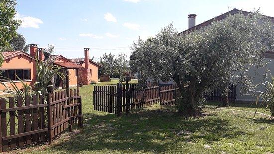 Bilde fra Agriturismo San Bartolomeo