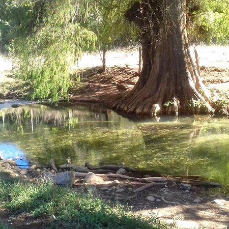 San Felipe del Agua, Mexico: Enjoy of this beautiful scenery in our Southern Sierra Nature Walk