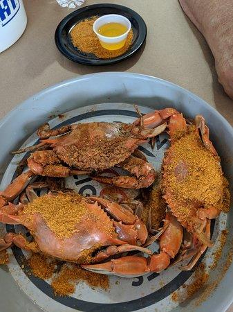Mug & Mallet: Mug and Mallet hard shell crabs