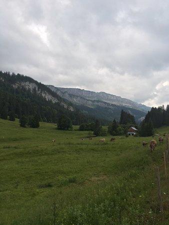 Berggasthof Rohrmoos: Blick ins weiterführende Tal