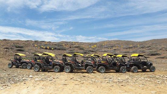 ABC Tours Aruba: Carros