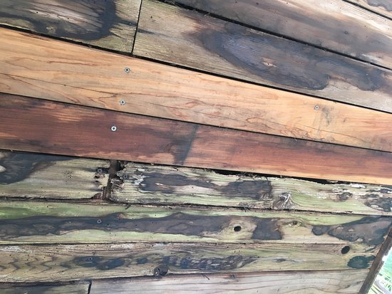Babbling Brook Inn: rotted deck above patio