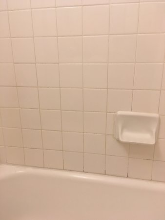 Handlery Hotel San Diego: filthy grout