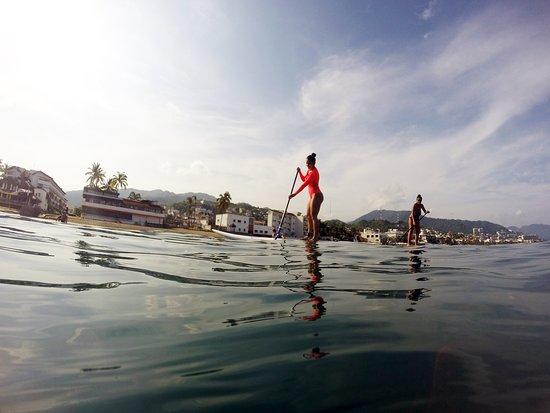 Vallarta Sup & Surf: Tour de Paddleboard en el malecón de Puerto Vallarta, Jal.